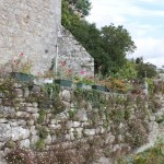 Pont-Croix 24 aout 2014 (51)