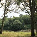 Pont-Croix 24 aout 2014 (60)