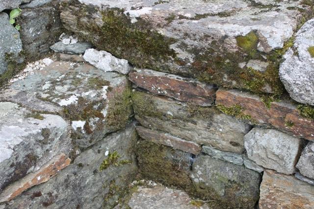 Ruine de la chapelle Languidou à Plovan (11)
