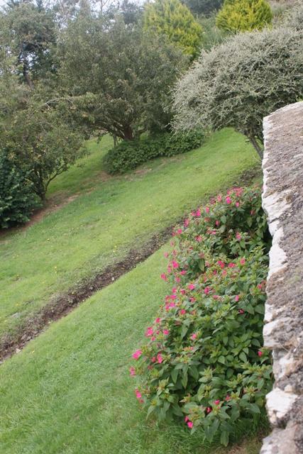 Ruine de la chapelle Languidou à Plovan (25)
